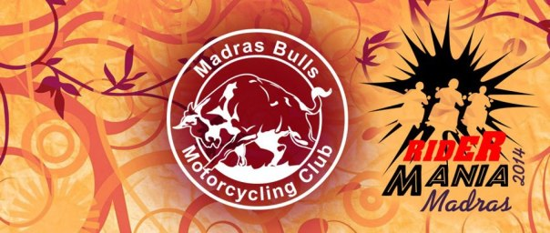 Madras bulls